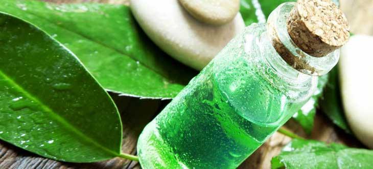 Как правильно применять масло чайного дерева для отбеливания зубов